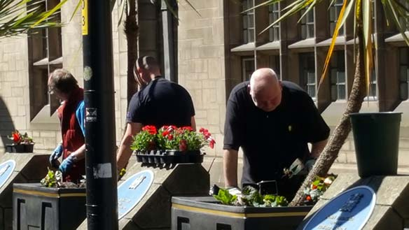 Volunteers replanting on the southern side of the cathedral