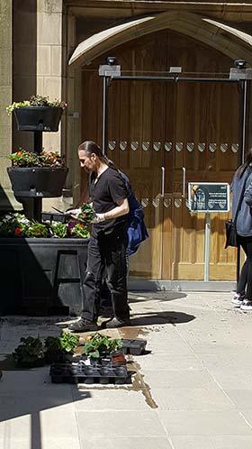 Volunteer replanting flower pots