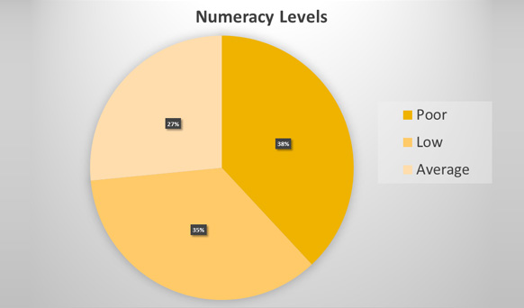 Numeracy Levels