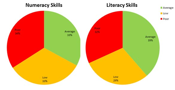 Numerecy and Literacy Skills Pie Chart